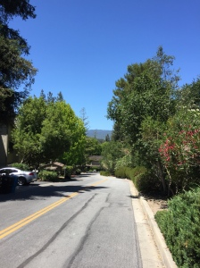 Walking around Menlo Park - VC Capital of the World